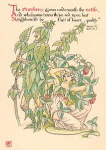 thumbnail Walter Crane – The strawberry grows underneath the nettle, And wholesome berries thrive and ripen best Neighbour'd by fruit of baser quality (Henry V) [from Flowers from Shakespeare's Garden]