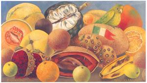フリーダ・カーロ – インコと旅のある静物 (フリーダ・カーロとその時代より)のサムネイル画像