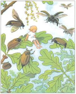 エルサ・ベスコフ – 挿絵6 (おやゆびひめより)のサムネイル画像