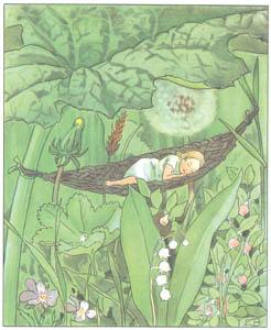 エルサ・ベスコフ – 挿絵7 (おやゆびひめより)のサムネイル画像