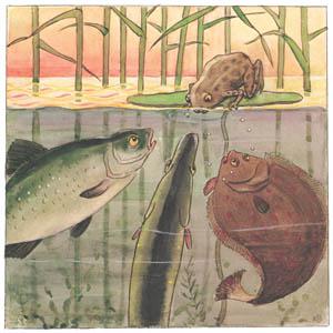 エルサ・ベスコフ – 挿絵6 (しりたがりやのちいさな魚のお話より)のサムネイル画像