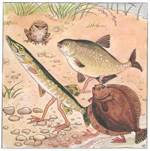 エルサ・ベスコフ – 挿絵8 (しりたがりやのちいさな魚のお話より)のサムネイル画像
