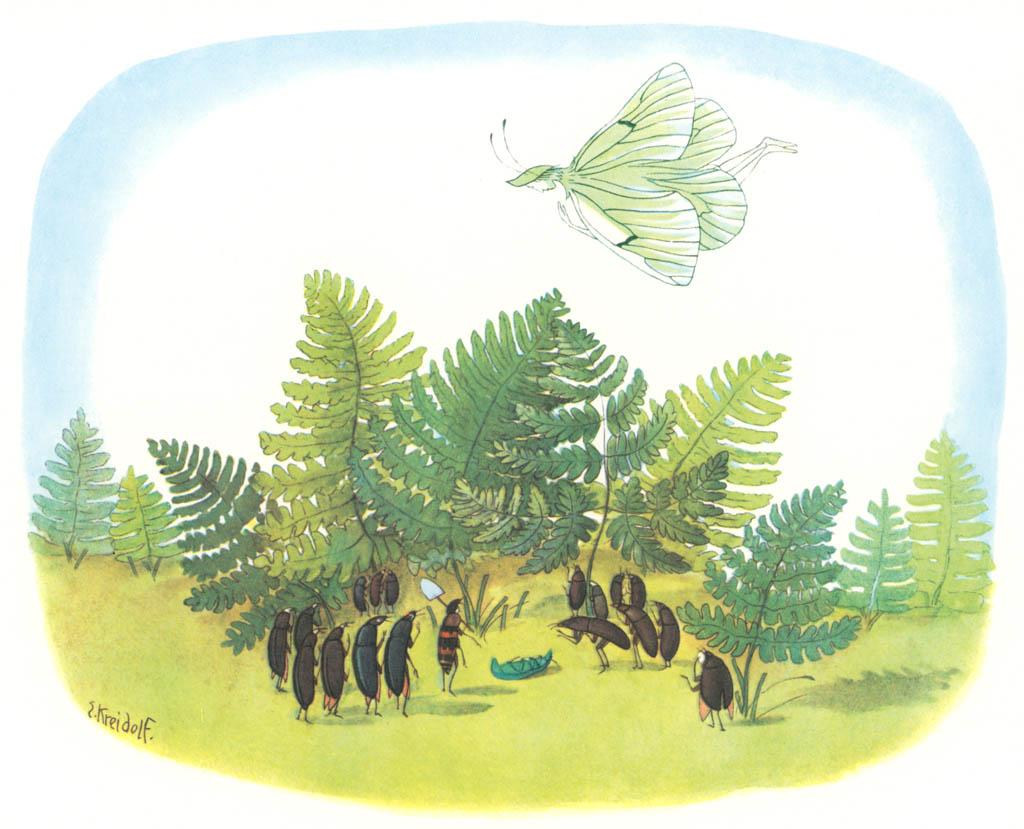 エルンスト・クライドルフ – 死んだカブトムシ [花を棲みかに(ドイツ語版)より] パブリックドメイン画像