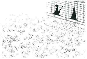 小村雪岱 – 突っかけ侍 挿絵1 [小村雪岱より]のサムネイル画像
