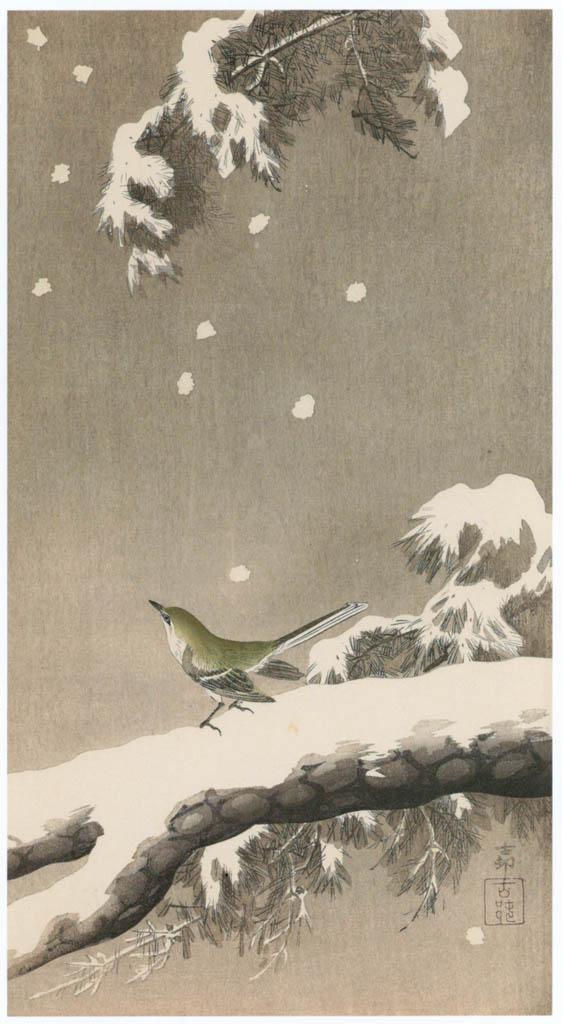 小原古邨 – 雪中の松に鴬 [版画芸術 181号より] パブリックドメイン画像