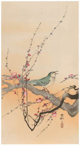 thumbnail Ohara Koson – Japanese Bush Warbler and Japanese Plum [from Hanga Geijutsu No.180]