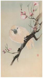 小原古邨 – 桃の花に鸚鵡 [版画芸術 181号より]のサムネイル画像