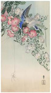 thumbnail Ohara Koson – Chinese Trumpet Vine, Siberian Blue Robin and Spider [from Hanga Geijutsu No.180]