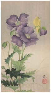 thumbnail Ohara Koson – Opium Poppy and Atlantic Canary [from Hanga Geijutsu No.180]
