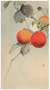 thumbnail Ohara Koson – Persimmon and Warbling White-eye [from Hanga Geijutsu No.180]