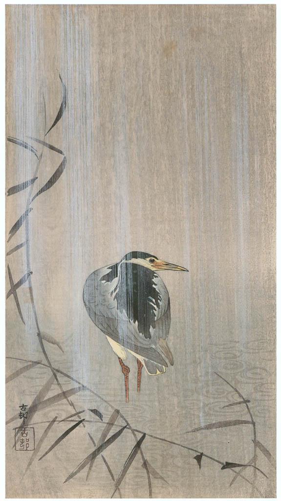 小原古邨 – 雨中の五位鷺 [版画芸術 181号より] パブリックドメイン画像