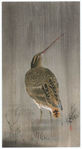 thumbnail Ohara Koson – Common Snipe in the Rain [from Hanga Geijutsu No.180]
