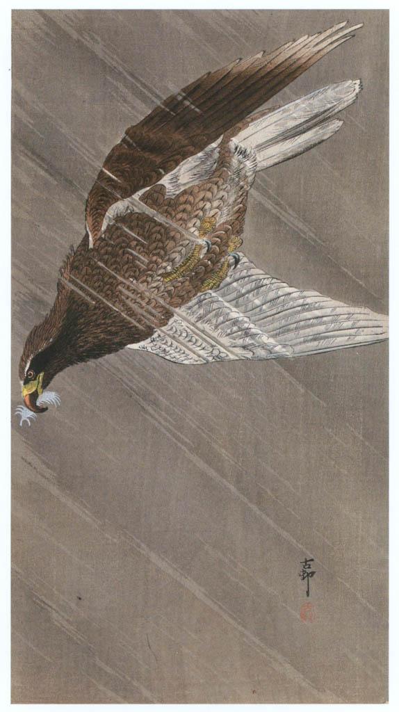 小原古邨 – 雨中の尾白鷲 [版画芸術 181号より] パブリックドメイン画像