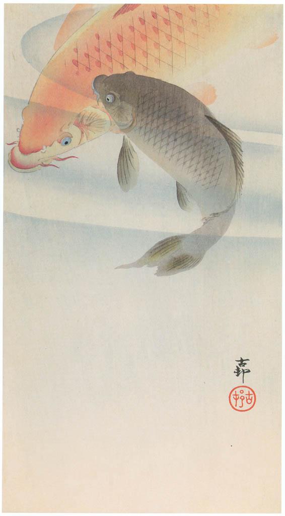 小原古邨 – 二匹の鯉 [版画芸術 181号より] パブリックドメイン画像