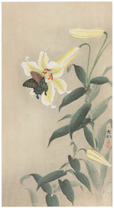 thumbnail Ohara Koson – Spangle and Lily [from Hanga Geijutsu No.180]