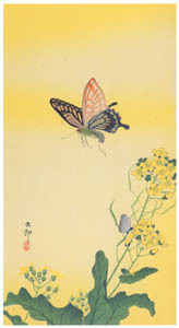 thumbnail Ohara Koson – Swallowtail Butterfly and Rapeseed [from Hanga Geijutsu No.180]