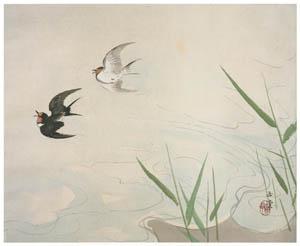 川合玉堂 – 水四題: 飛燕 [没後50年 川合玉堂展:時を越えよみがえる日本の自然より]のサムネイル画像