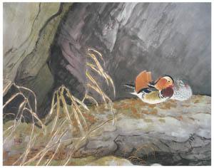 川合玉堂 – 鴛鴦 [没後50年 川合玉堂展:時を越えよみがえる日本の自然より]のサムネイル画像