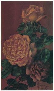 thumbnail Kiyohara Tama – Roses [from Tama Eleonora Ragusa]