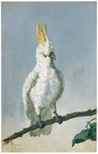 ラグーザ玉 – 鸚鵡 [図録 ラグーザ玉展より]のサムネイル画像