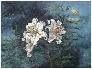 ラグーザ玉 – ゆりの花 [図録 ラグーザ玉展より]のサムネイル画像